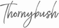 Thornybush Luxury Game Lodge Collection via CemAir